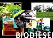 Inversionistas para montar planta de biodiesel en colombia.