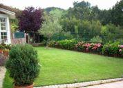 Jardineria y arreglos en general ducami