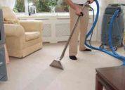 Lavado profesional de tapetes y muebles