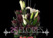25flores.com (domicilios: chia-cajica-zipaquira-cota-sabana norte.)