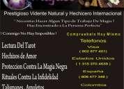 Profesor miguel , maestro profesional , tarot , videncia , astrologia . numerologia