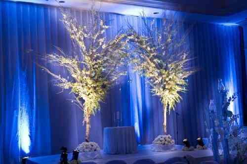Fotos de eventos decoracion con velos y telas entelados for Decoracion de salon con telas y luces