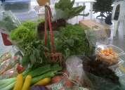 Mercado organico a domicilio en bogota